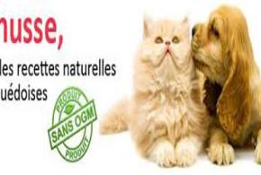échantillon de croquettes pour chiens et chats - Husse