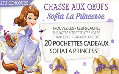 Pochettes cadeaux sofia la princesse - Jeux de princesse sofia gratuit ...