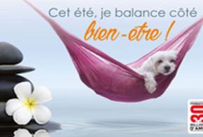 Echantillon gratuit, Kit vacances pas bêtes 2016