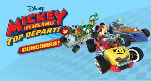 Organisation d'une fête sur le thème Mickey & Minnie