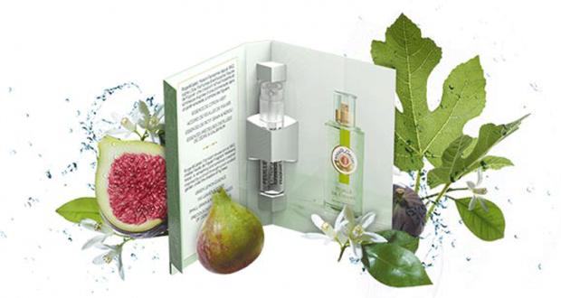 9900 chantillons de l eau parfum e bienfaisante feuille for Alimentation maison prix