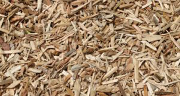 Distribution gratuite de broyatMulch au Parc Monmousseau