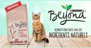 3000 Paquets gratuits de Croquettes pour chat Purina BEYOND