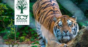 Entrée gratuite au Zoo de Mulhouse