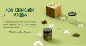 4400 kits gratuits Mon Cornichon Maison