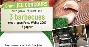 3 barbecues électriques Weber