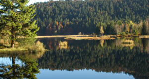 5 séjours pour 2 à 4 personnes dans les Vosges