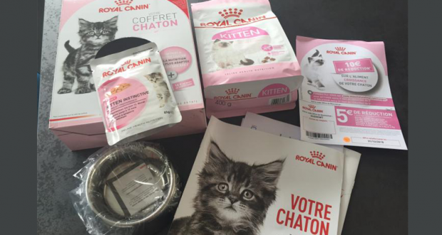 Coffrets chatons Royal Canin gratuits
