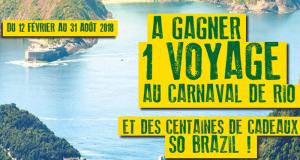 Voyage d'une semaine pour 2 à Rio de Janeiro au Brésil