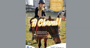 Initiation Gratuit à l'Equitation