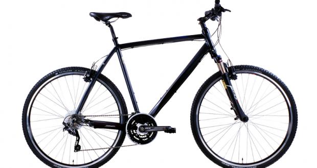 5 vélos tout chemin