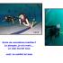 Baptême de plongée gratuit - Saint Malo