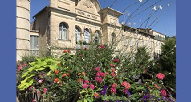 Distribution gratuite de plantes - Apt