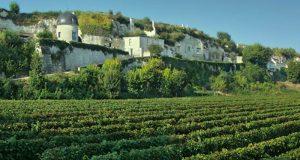Week-end pour 2 personnes dans un domaine viticole