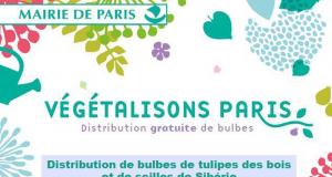 Distribution gratuite de 40 000 sachets de bulbes