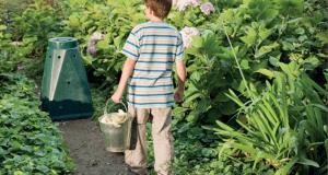 Distribution gratuite de Composteurs et formation au compostage