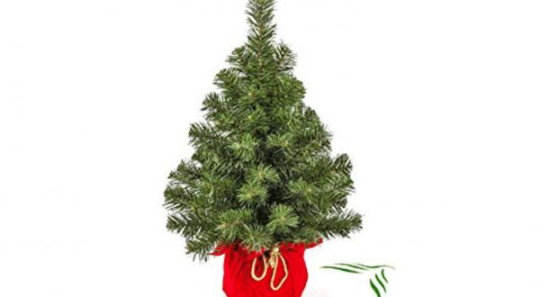 Distribution gratuite de sapins de Noël - Mignovillard