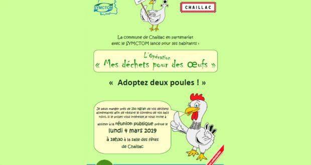 2 poules pondeuses gratuites pour réduire les déchêts - Chaillac