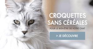 Échantillons gratuits de croquettes et pâtées sans céréales pour chat Ultra Premium Direct