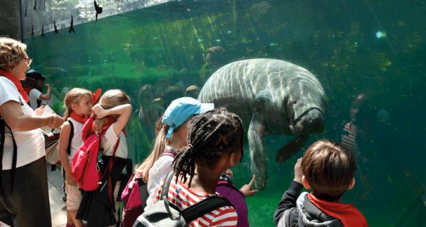 Entrée gratuite au Parc Zoologique de Paris
