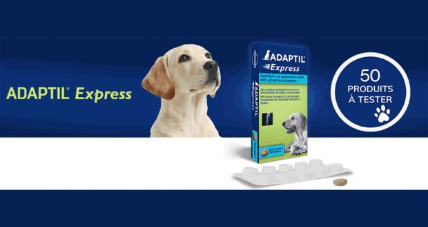 Comprimés pour Chiens Adaptil Express