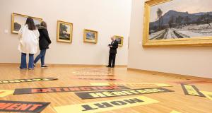 Entrée gratuite au Musée et Muséum de Grenoble