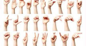 Initiations Gratuites à la Langue des Signes Française (LSF) au Mans