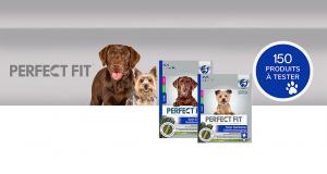Bâtonnets PERFECT FIT Soin Dentaire pour chiens à tester