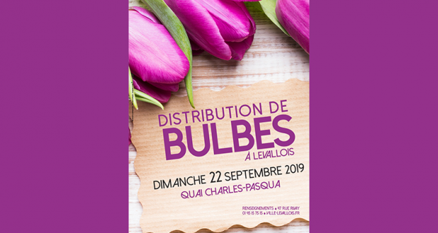 Distribution gratuite de Bulbes - Levallois-Perret