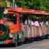 Petit Train Gratuit + Promenade gratuite en poney et en calèche