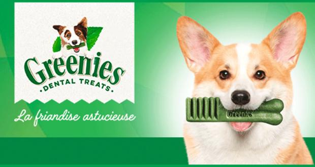 Échantillon gratuits Greenies Petite pour chien de 8 à 11kg
