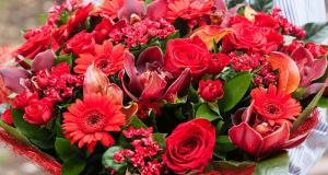 70 lots d'un an de fleurs de 480 euros offerts