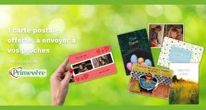 Carte postale personnalisable Primevère offerte
