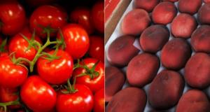 1Kg de Pêches & 1Kg de Tomates Offerts sur simple demande