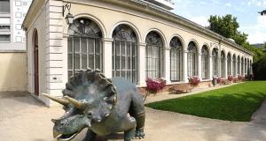 Entrée Gratuite au Muséum & au Musée de Grenoble