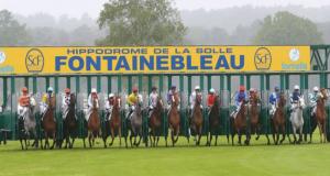 Entrée gratuite pour tous - Hippodrome de la Solle Fontainebleau