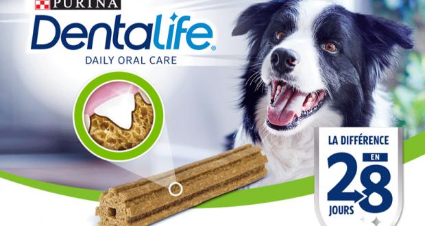 Échantillons gratuits de Purina DentaLife pour chien