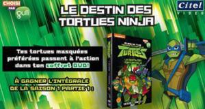 15 coffrets DVD Le destin des tortues Ninja offerts