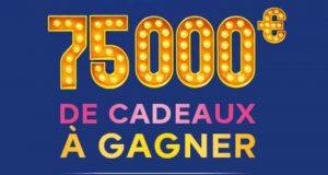 9949 cartes cadeaux Castorama offertes
