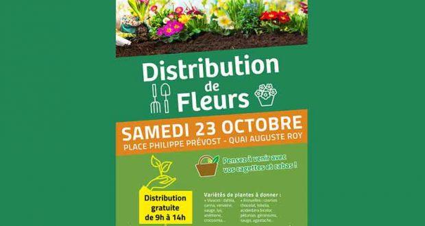 Distribution gratuite de fleurs vivaces ou bisanuelles