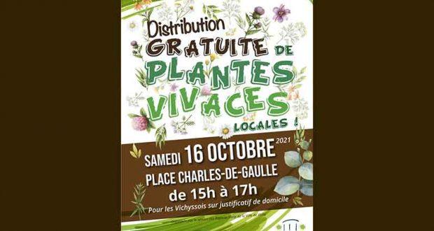 Distribution gratuite de plantes vivaces locales